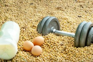 спорт и белки